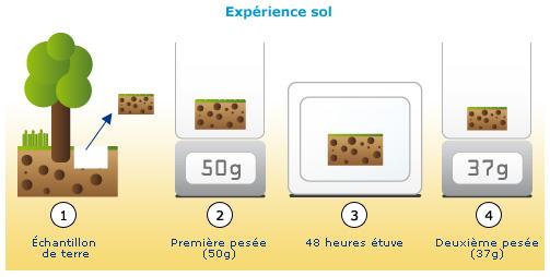 cours de svt - un sol fragile, qui se forme lentement et