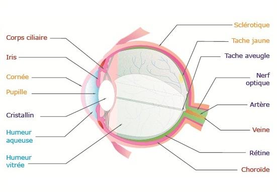 Lopération laser sur les yeux jutoub
