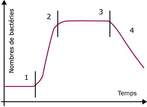 origine aliments cycle 3